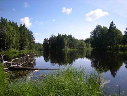 Тургайское озеро